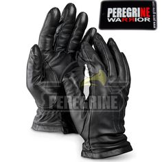 Fencing Gloves For more detail click the link below #Fencing #Gloves #fencing #equipment #fencing #equipment #winnipeg #fencing #gear #wiki #fencing #equipment #washington #dc #fencing #equipment #wire #stretchers #fencing #equipment #wholesale #fencing #equipment #what #do #you #need #fencing #gear #websites #fencing #equipment #wireless #fencing #gear #youth #fencing #equipment #yorkshire #youtube #fencing #equipment #youth #fencing #gloves #zuma #fencing #gloves #z #fencing #equipment