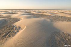 Stuivend zand vormt jonge duinen op het brede zandstrand aan de Noordzeezijde van Schiermonnikoog - foto: Lars Soerink