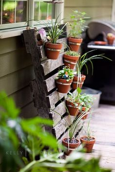 Pallet Planter - hang pots off pallet on wall instead of planting directly into it (avoid potential chemicals from pallet getting into herbs)