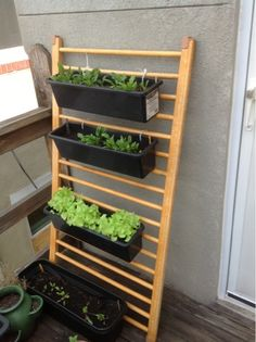 Drop Side Crib into A Vertical Garden | The Great Walls of Baltimore