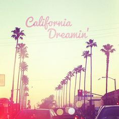 California Dreaming. Palm Trees. Coast Hwy.