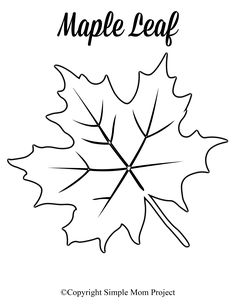 Free Printable Large Leaf Templates, Stencils and Patterns - Simple Mom Project Looking for an autumn leaf craft idea? Use these free large printable leaf cutout templates so spark your creativity! These fall leaf stencils make a perfect easy c Leaves Template Free Printable, Maple Leaf Template, Leaf Printables, Printable Crafts, Free Printables, Leaf Coloring Page, Easy Coloring Pages, Leaf Stencil, Stencils