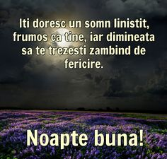 Felicitari de Noapte - Noapte buna! Church Flower Arrangements, Good Night, Beautiful Pictures, Memes, Mario, Quote, Photos, Messages, Italia