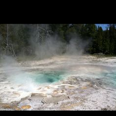 Hot springs. Yellowstone.