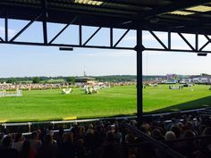 Show jumping from the Grandstand at Show Jumping, Yorkshire, Basketball Court, England, Pictures, Photos, Photo Illustration, Hunter Jumper, English