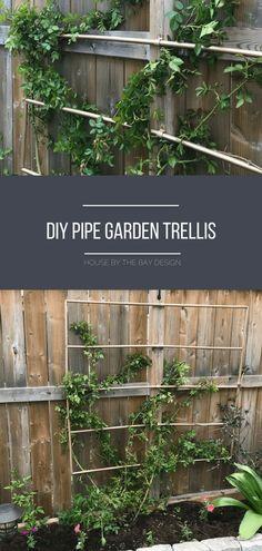 548 Best Trellis Ideas Images In 2019 Garden Trellis Patio