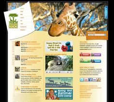 Inside the Design: The San Francisco Zoo's Website Redesign on http://www.howinteractivedesign.com