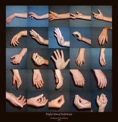 Znalezione obrazy dla zapytania hand structure every side