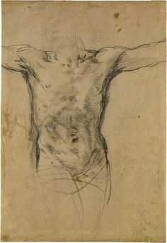 Guido Reni (1575–1642)  Torso  Black chalk, heightened with white chalk, on gray paper  14 5/8 x 9 15/16 inches (371 x 252 mm)  Inscribed on verso of an old lining, in pen and brown ink, Guido Reni per il Crocifisso dei Cappucini di Bologna uno dei piáu  Purchased as the gift of the Fellows; 1961.34, The Morgan Library & Museum: