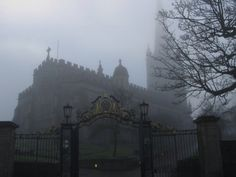 Cathedral in the Fog Shakespeare, Vampire Castle, Permanent Vacation, Black Dagger Brotherhood, Dark Paradise, Vampire Academy, Metal Girl, The Infernal Devices, Dark Places