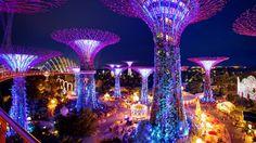 garden rhapsody light show gardens by the bay