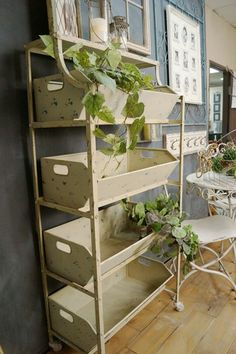 Rolling Garden Shelf - I would fill this with plants!!