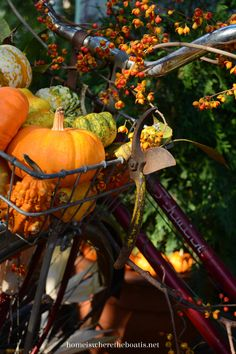 Bicycle built for pumpkins. From Home is Where the Boat is.