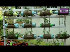 Sustainable Drip Irrigation for Plants - YouTube