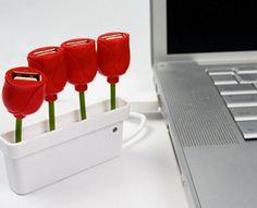 Tulip USB's