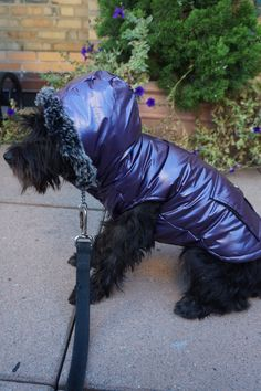 Royal Animals Purple Fleece Lined Puffer Coat with Faux Fur Trim and Pocket Royal Animals, Dog Coats, Pet Clothes, Fur Trim, Faux Fur, Pocket, Pets, Purple, Animals And Pets