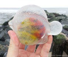 Sea Glass Photo Archives