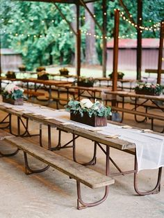Perfect setting for an eco-friendly, rustic wedding.  A park wedding can be stylish.   #EarthDay