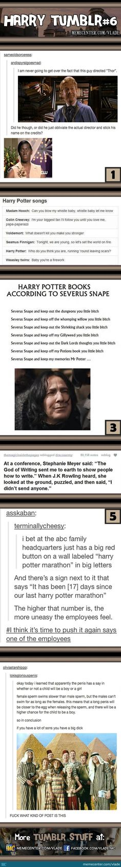 Harry Potter tumblr 6 | Harry Potter according to Snape. You almost made me cry you idjits.