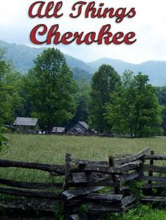 All Things Cherokee has helped thousands of families with their Cherokee genealogy research. We offer tons of free information as well as genealogy services to help you find answers to your genealogy questions.