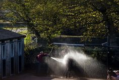 Horse being washed down in the stable yard at Fairyhouse Racecourse. Thoroughbred, Stables, Horse Racing, Wonderful Images, Great Photos, Fries, Ireland, Waterfall, Yard