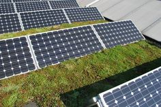 Green Roofs and Great Savings Solar Pannels, Green Roof Benefits, Sedum Roof, Homemade Solar Panels, Co Housing, Suburban House, Solar Roof Tiles, Tropical Beach Houses, Beach House Plans