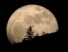 El proximo domingo podremos ver un acercamiento de la Luna a los planetas Marte y Saturno