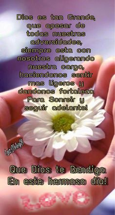tu gracia me salvo Happy Day Quotes, Morning Love Quotes, Good Morning Messages, Good Morning Greetings, Good Morning Prayer, Good Morning Good Night, Morning Prayers, Morning Wish, Goodnight Quotes For Friends