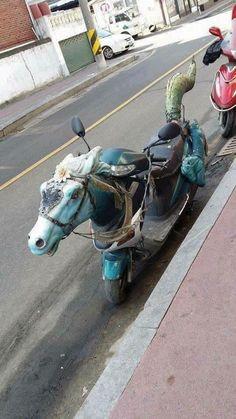 Racing Horse lol