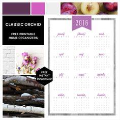 Orchid.jpg 640×640 pixel