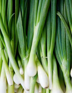 cebolinhas verdes