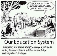 Funny but true. A little humor around standardized testing in education :) E Mc2, Education System, Teacher Humor, Teacher Quotes, Teacher Comics, Teacher Resources, Education Quotes, Albert Einstein Quotes Education, Learning Quotes