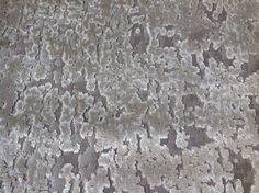 Jane Churchill Distressed Cut Velvet Fabric- Halcyon / Ivory 1.15 yd (J781F-01)   eBay