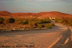Loeriesforntein road