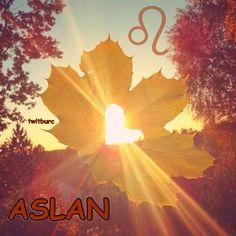 #Eylül ayı #Aslan burcu