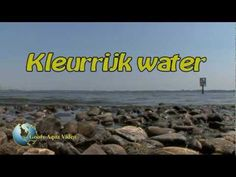 The different colours of Holland's fresh water. By Goofy Aqua Video.