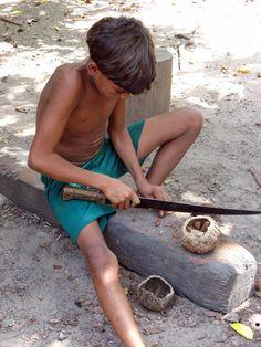 Opening Brazil Nut  The Amazon  © Janice Wald Henderson