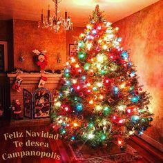 Les deseamos una hermosa Noche Buena y una muy Feliz Navidad desde  #campanopolis #feliznochebuena #feliznavidad #merrychristmas  #buonnatale
