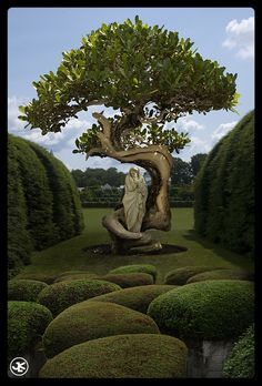 Part of a series that involved incorporating #Bonsai Trees into environments around the world to create a fun shift in perspective. #photomanipulation #digital #fantasy #surreal