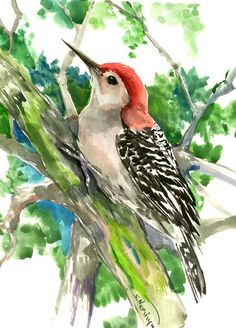 Red-Headed Woodpecker, bird art, 14 x 11  in, watercolor painting, original art, Woodland, wild birds by ORIGINALONLY on Etsy