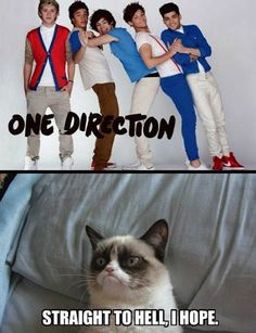 Grumpy Cat on One Direction