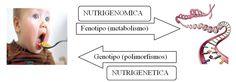 NUTRIGENÓMICA http://endocrinoynutricion.files.wordpress.com/2013/03/nutrigenc3b3mica.png
