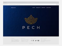 PECH is a luxury cosmetic retailer based in Hong Kong. Recently established, PECH is launching their first product in 2015. We were asked to design their branding to reflect their empowered, elegant and modern, primarily Asian target market.The modular …