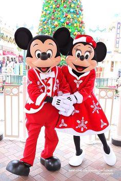 Holidays at Disney Walt Disney World Disney Fan, Disney Love, Disney Magic, Disney Parks, Disney Cruise, Mickey Mouse And Friends, Mickey Minnie Mouse, Disney Mickey, Walt Disney
