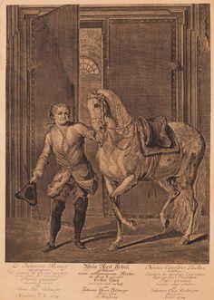 Johann Elias Ridinger - 18 Blätter: Die Neue Reitschule