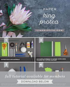 Paper Protea Flower - Lia Griffith Paper Flowers Craft, Crepe Paper Flowers, Flower Crafts, Flower Paper, Protea Art, Protea Flower, Giant Flowers, Diy Flowers, Diy Paper