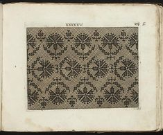 For all you Scots out there: It's a chart for (I think) an all over pattern of thistles. Slightly out of period but close (though the pattern is probably older than the printer): Model Buch : Teil 1.-2 ~ c. 1660 (Fürst, Paul, ca. 1605-1666)