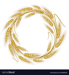 Circular frame wreath of wheat ears vector image on VectorStock Wheat Drawing, Wheat Tattoo, Première Communion, Cross Stitch Art, Colouring Techniques, Frame Wreath, Botanical Drawings, Interactive Design, Background Patterns