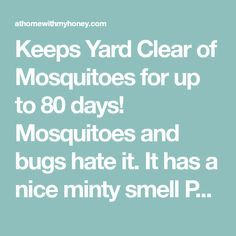 DIY Mosquito Yard Spray Keeps Yard Clear of Mosquitoes for up to 80 days! Mosquitoes and bugs hate i Homemade Mosquito Spray, Mosquito Yard Spray, Diy Mosquito Repellent, Natural Mosquito Repellant, Mosquito Repelling Plants, Insect Repellent, Diy Mosquito Trap, Mosquito Repellent Essential Oils, Bug Spray Recipe