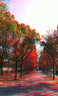 The Difference between 3D Stereograms and Anaglyphs from Snapily Blog